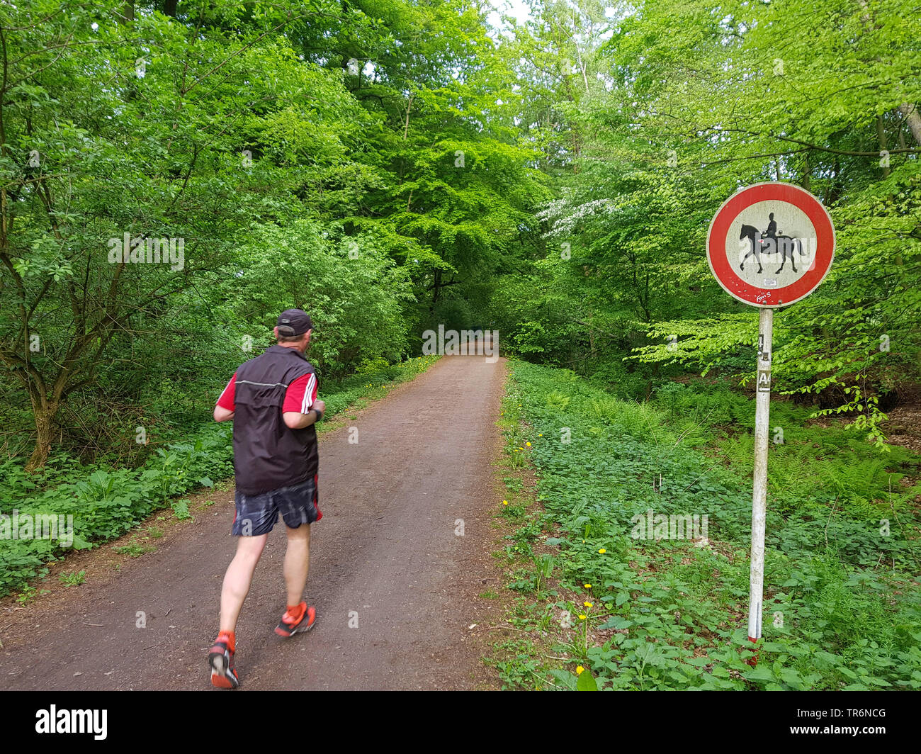 sign 'prohibition for riders' at a path, Germany, North Rhine-Westphalia, Ruhr Area, Witten - Stock Image