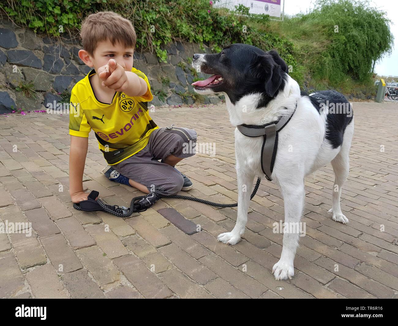 Mischlingshund (Canis lupus f. familiaris), kleiner Junge kniet auf dem Boden und zeigt mit einem Mischlingshund etwas mit den Zeigefinger, Deutschlan - Stock Image