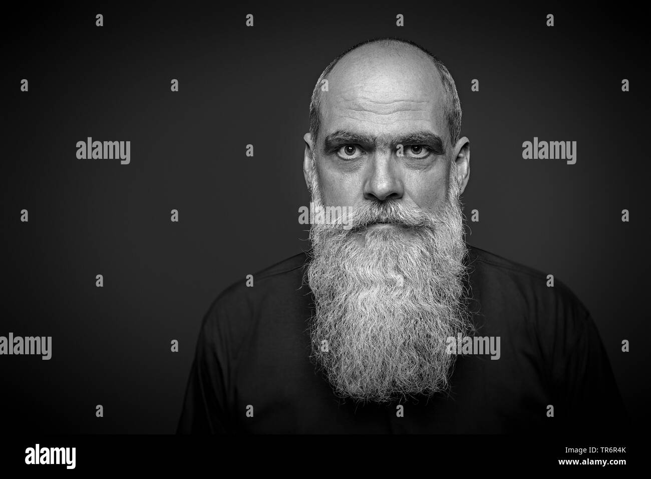 male portrait with long beard, Germany - Stock Image