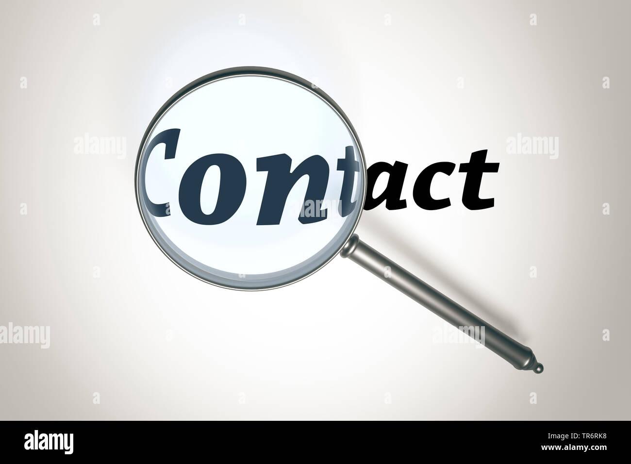 Lupe vergroessert das Wort contact, Kontakt | magnifying glass with the word contact | BLWS489720.jpg [ (c) blickwinkel/McPHOTO/M. Gann Tel. +49 (0)23 - Stock Image