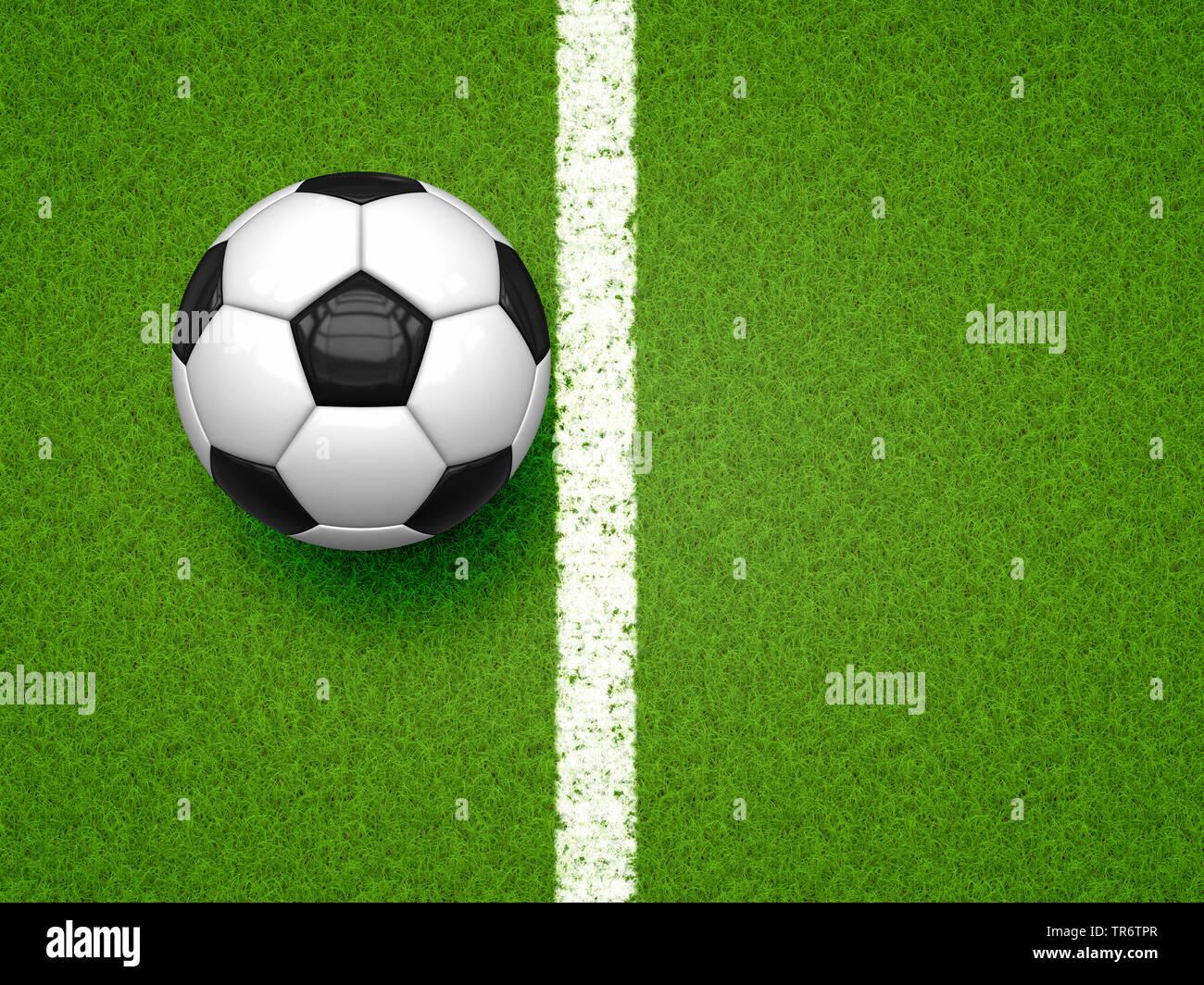 Fussball auf gruenem Rasen | football on green football field | BLWS490627.jpg [ (c) blickwinkel/McPHOTO/M. Gann Tel. +49 (0)2302-2793220, E-mail: inf - Stock Image
