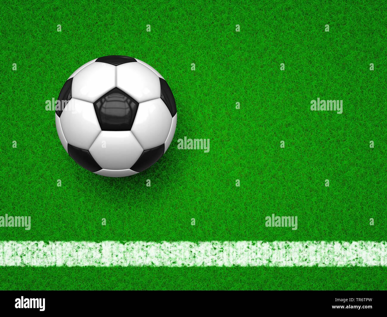 Fussball auf gruenem Rasen | football on green football field | BLWS490628.jpg [ (c) blickwinkel/McPHOTO/M. Gann Tel. +49 (0)2302-2793220, E-mail: inf - Stock Image
