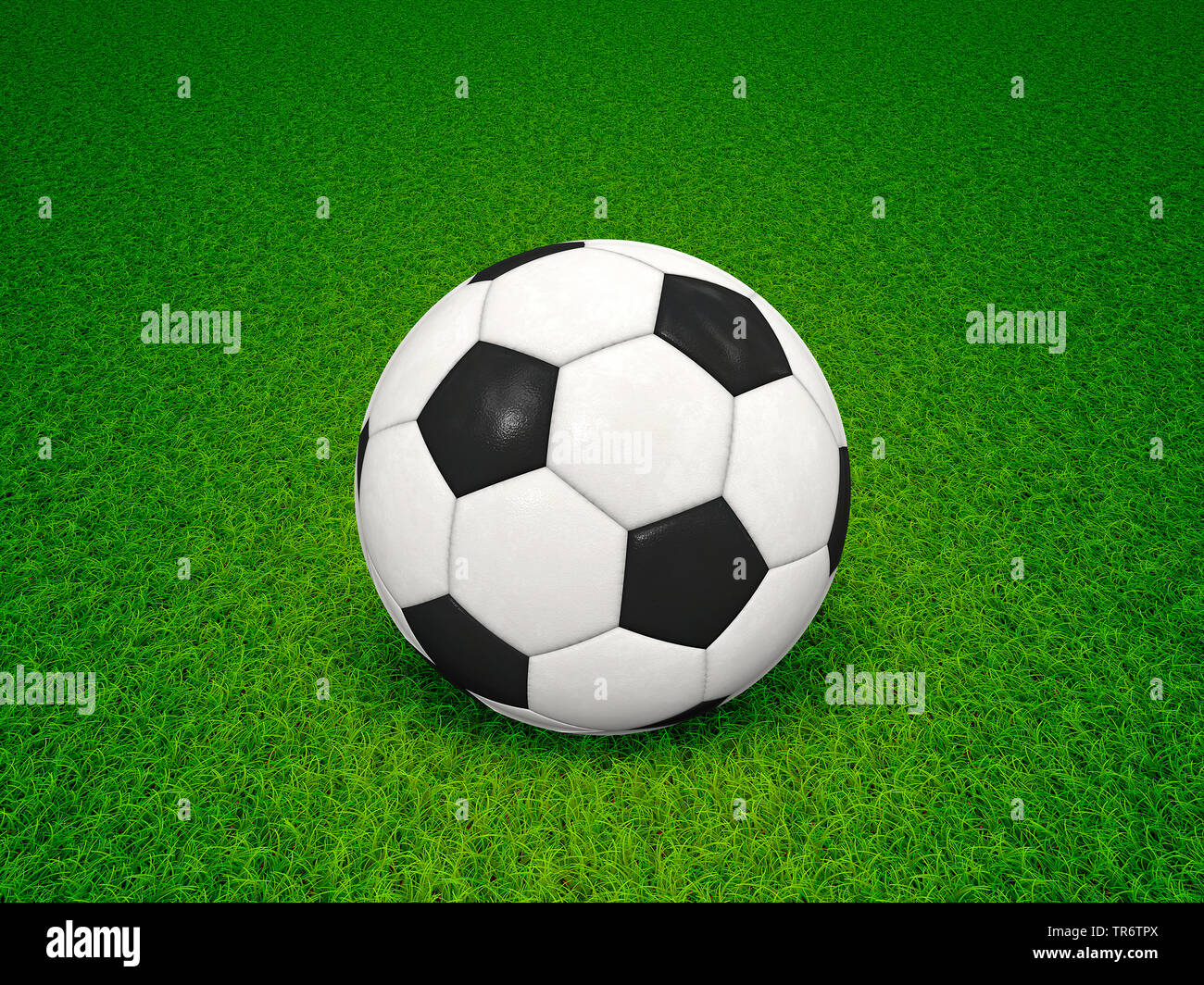 Fussball auf gruenem Rasen, Computergrafik | football on green lawn, computer graphic | BLWS490629.jpg [ (c) blickwinkel/McPHOTO/M. Gann Tel. +49 (0)2 - Stock Image