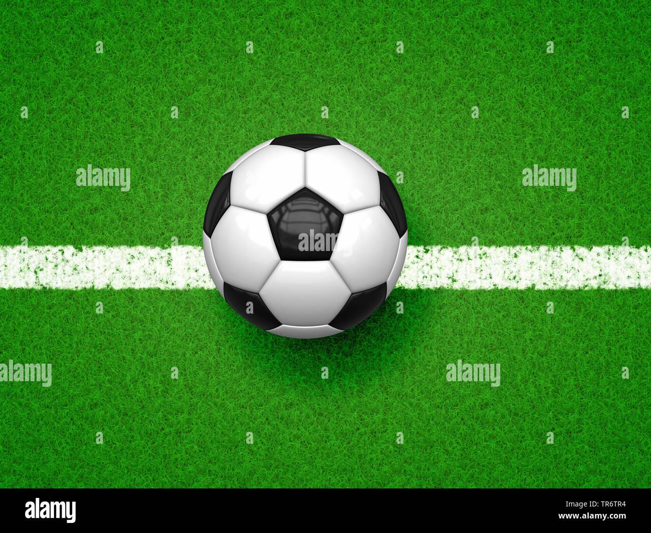Fussball auf gruenem Rasen | football on green football field | BLWS490634.jpg [ (c) blickwinkel/McPHOTO/M. Gann Tel. +49 (0)2302-2793220, E-mail: inf - Stock Image