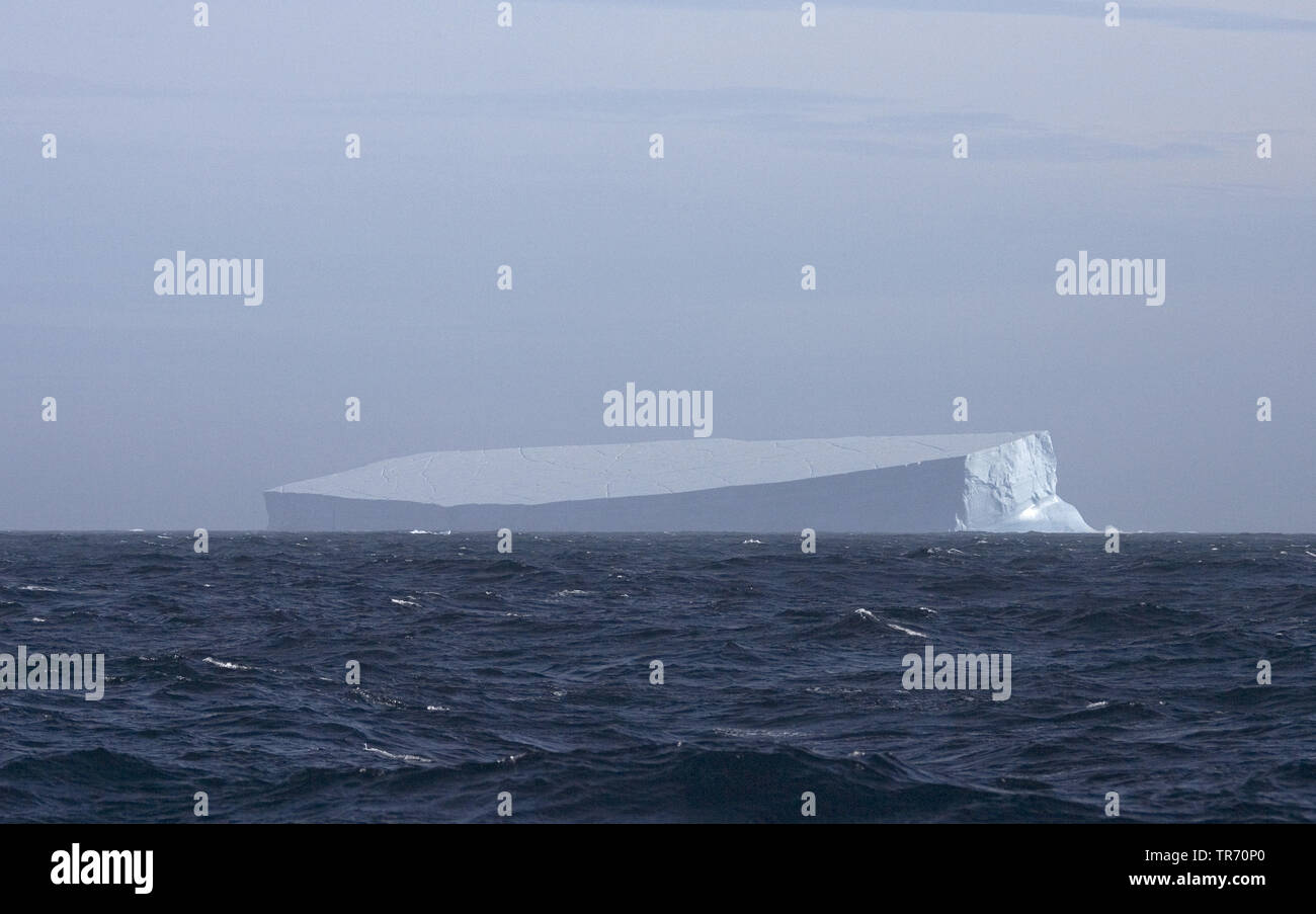 Iceberg south of South Georgia , Suedgeorgien - Stock Image
