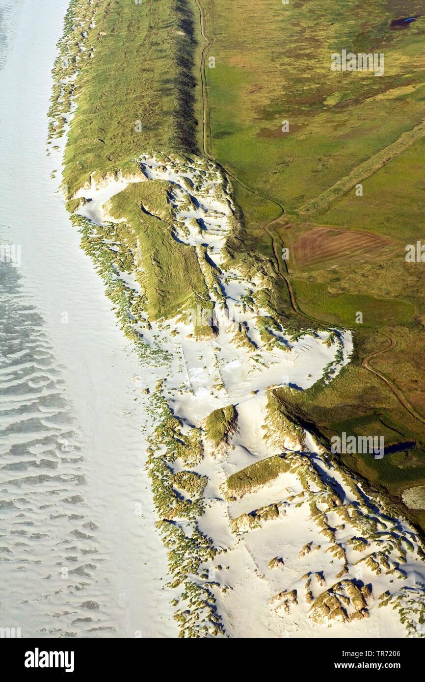 Duenen auf Terschelling, Luftbild, Niederlande, Terschelling | Aerial photo of Terschelling, aerial photo, Netherlands, Terschelling | BLWS495034.jpg - Stock Image