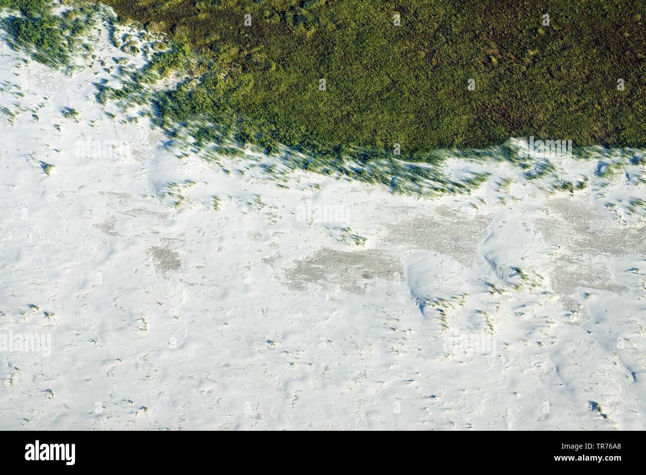 Duenen auf Schiermonnikoog, Luftbild, Niederlande, Schiermonnikoog | dunes of Schiermonnikoog, aerial photo, Netherlands, Schiermonnikoog | BLWS499113 - Stock Image