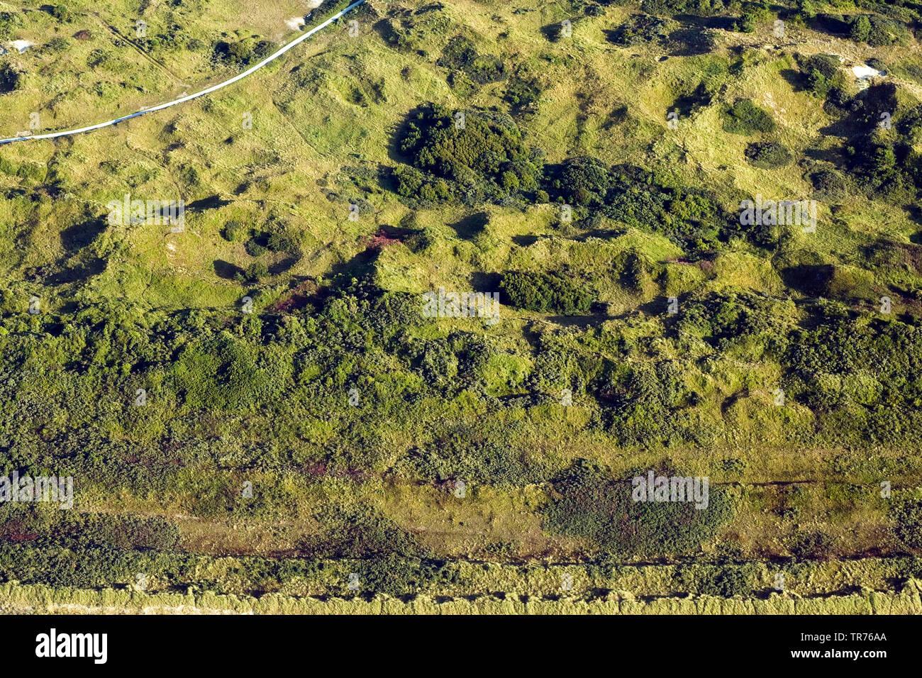 Duenen auf Schiermonnikoog, Luftbild, Niederlande, Schiermonnikoog | dunes of Schiermonnikoog, aerial photo, Netherlands, Schiermonnikoog | BLWS499112 - Stock Image