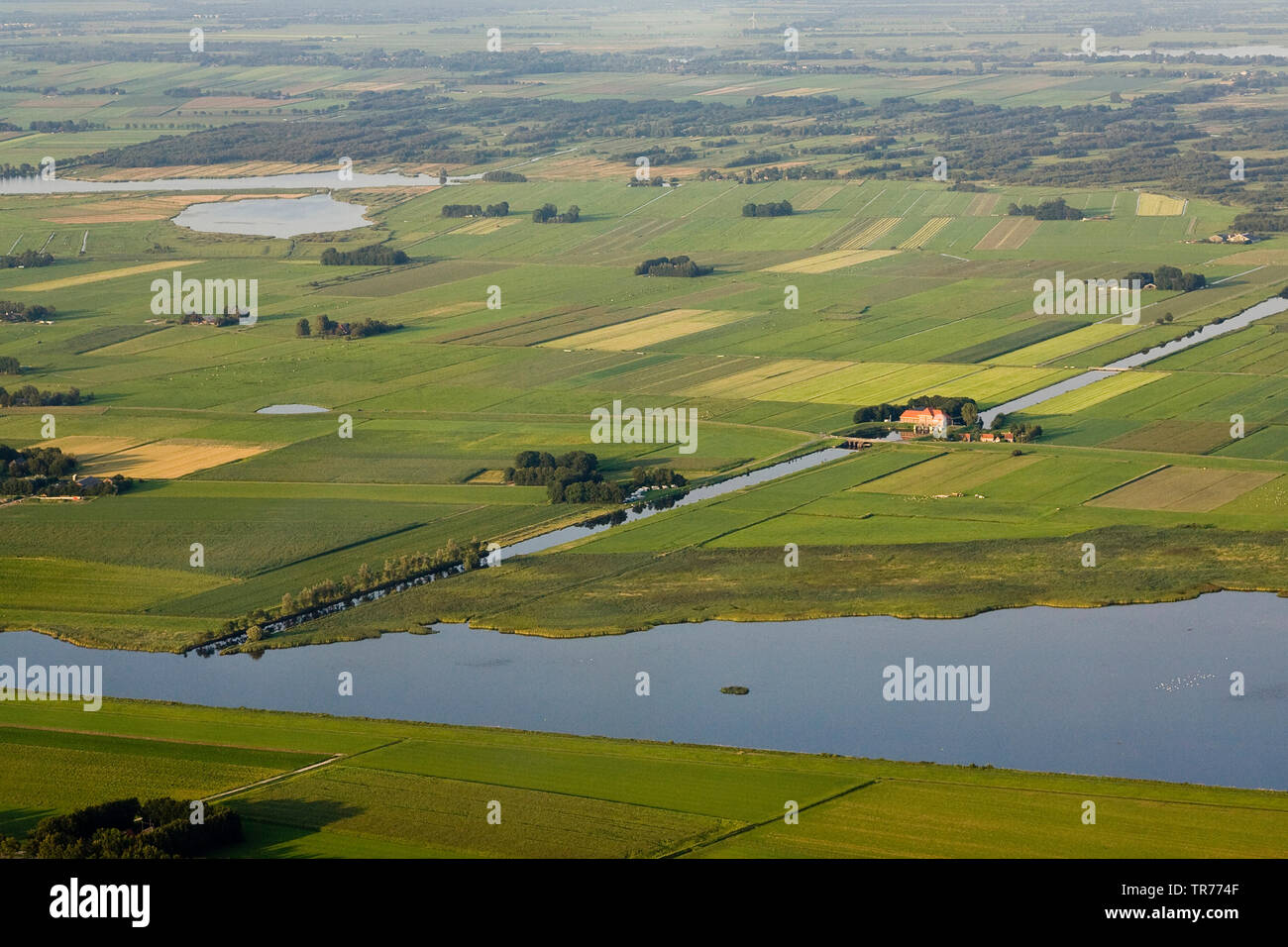 field landscape in North Holland, aerial view, Netherlands, Northern Netherlands - Stock Image