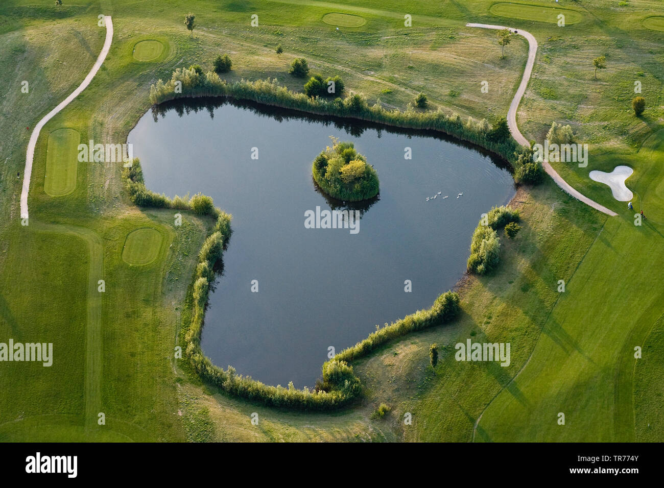 golf course mit pond in North Holland, aerial view, Netherlands, Northern Netherlands - Stock Image