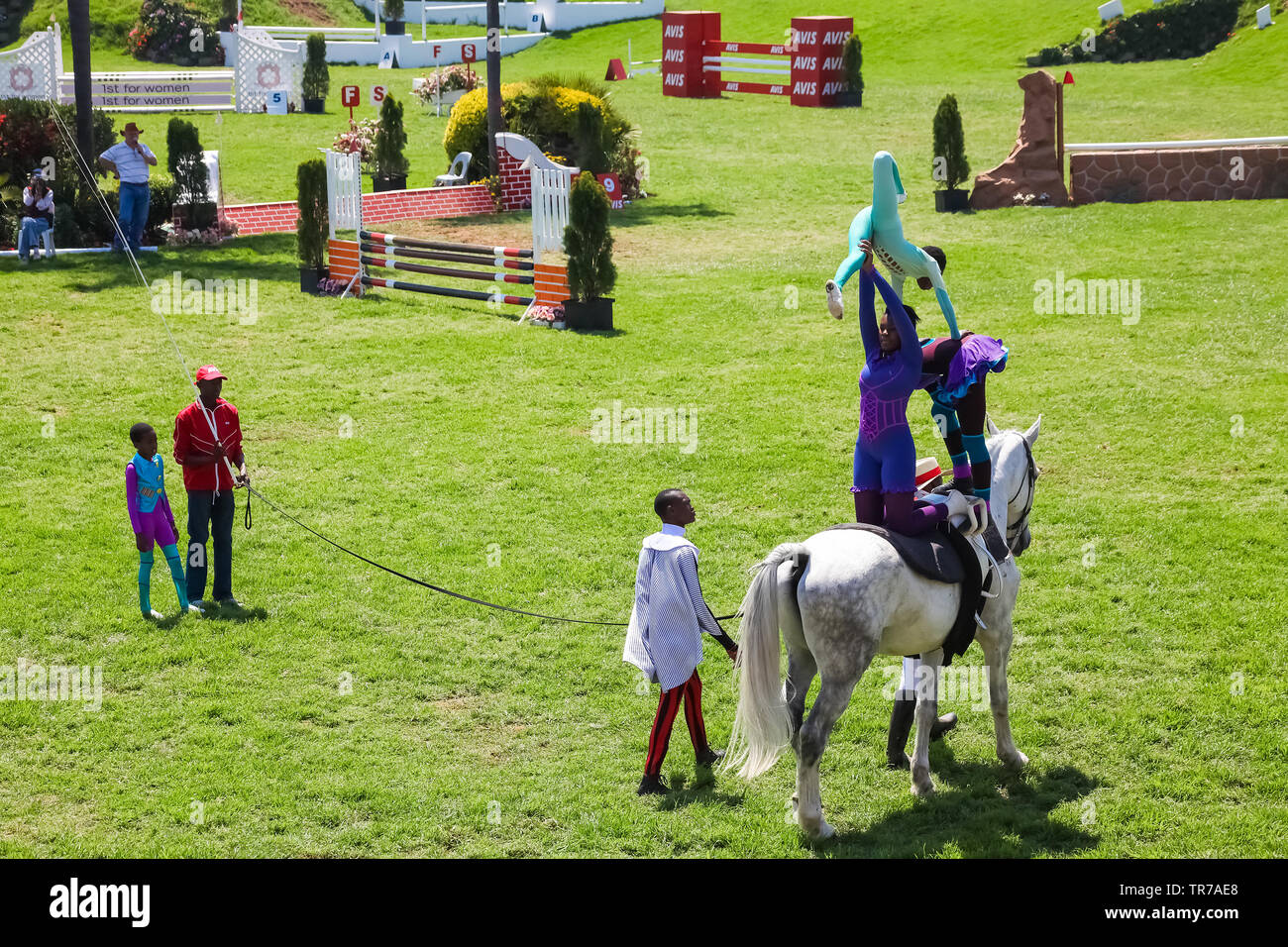 Johannesburg, South Africa - October 08 2011: Equestrian Show Jumping and Horse Riding display - Stock Image