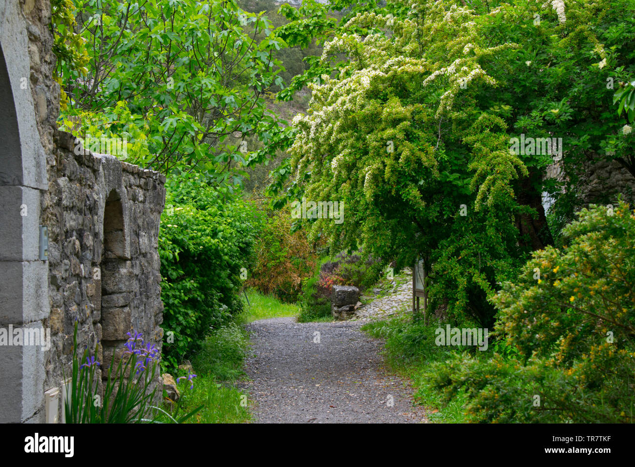 mystical path near Rochecolombe in the Ardeche region in France - Stock Image