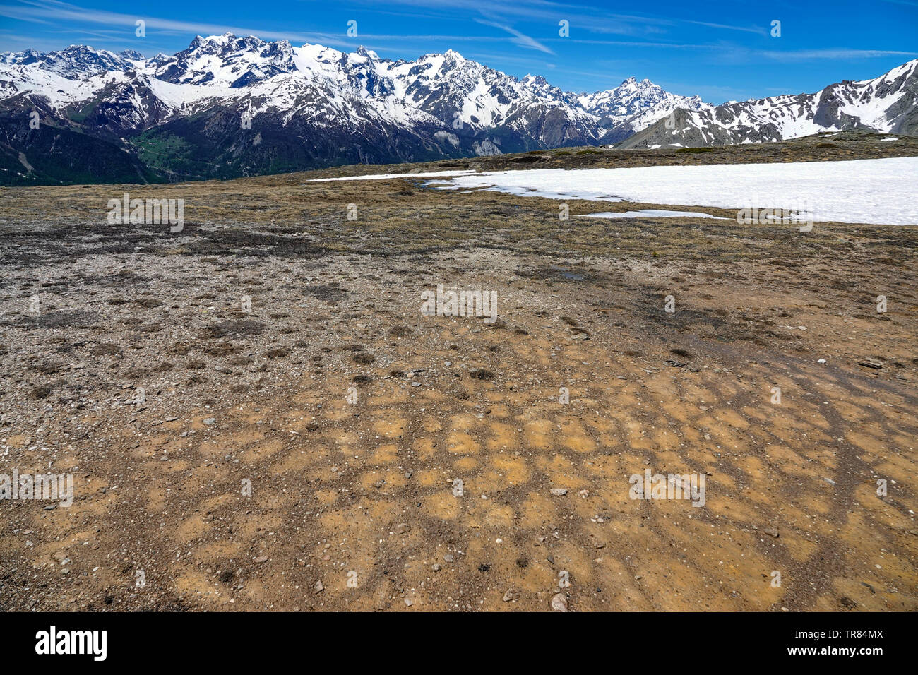 Frost polygons on flat gravel area, Col du Granon, Briancon, Ecrins, France - Stock Image