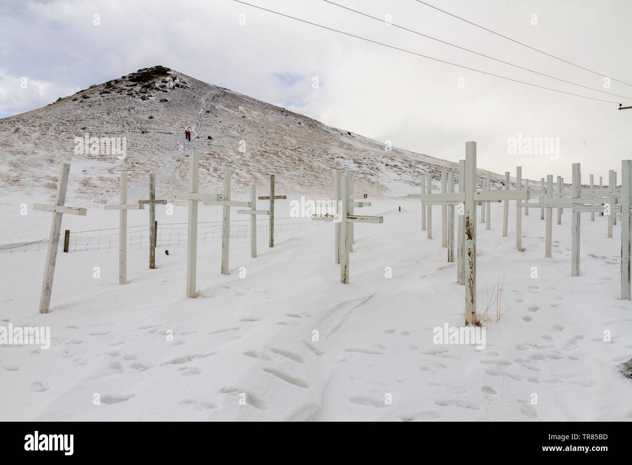 A memorial of crosses by Hannes Kristmundsson, to remember the victims of road accidents, at Kögunarhóll, near Selfoss, Iceland. - Stock Image
