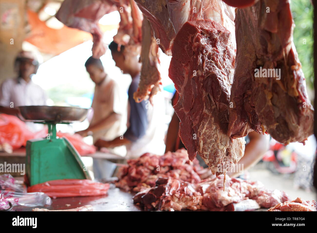 Fresh Halal Beef Meat and Scales at Meat Shop Stock Photo: 255263796
