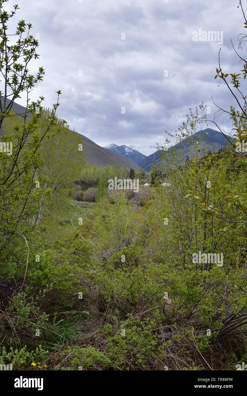 Sun Valley, Badger Canyon in Sawtooth Mountains National Forest Landscape panorama views from Trail Creek Road in Idaho. United States. - Stock Image