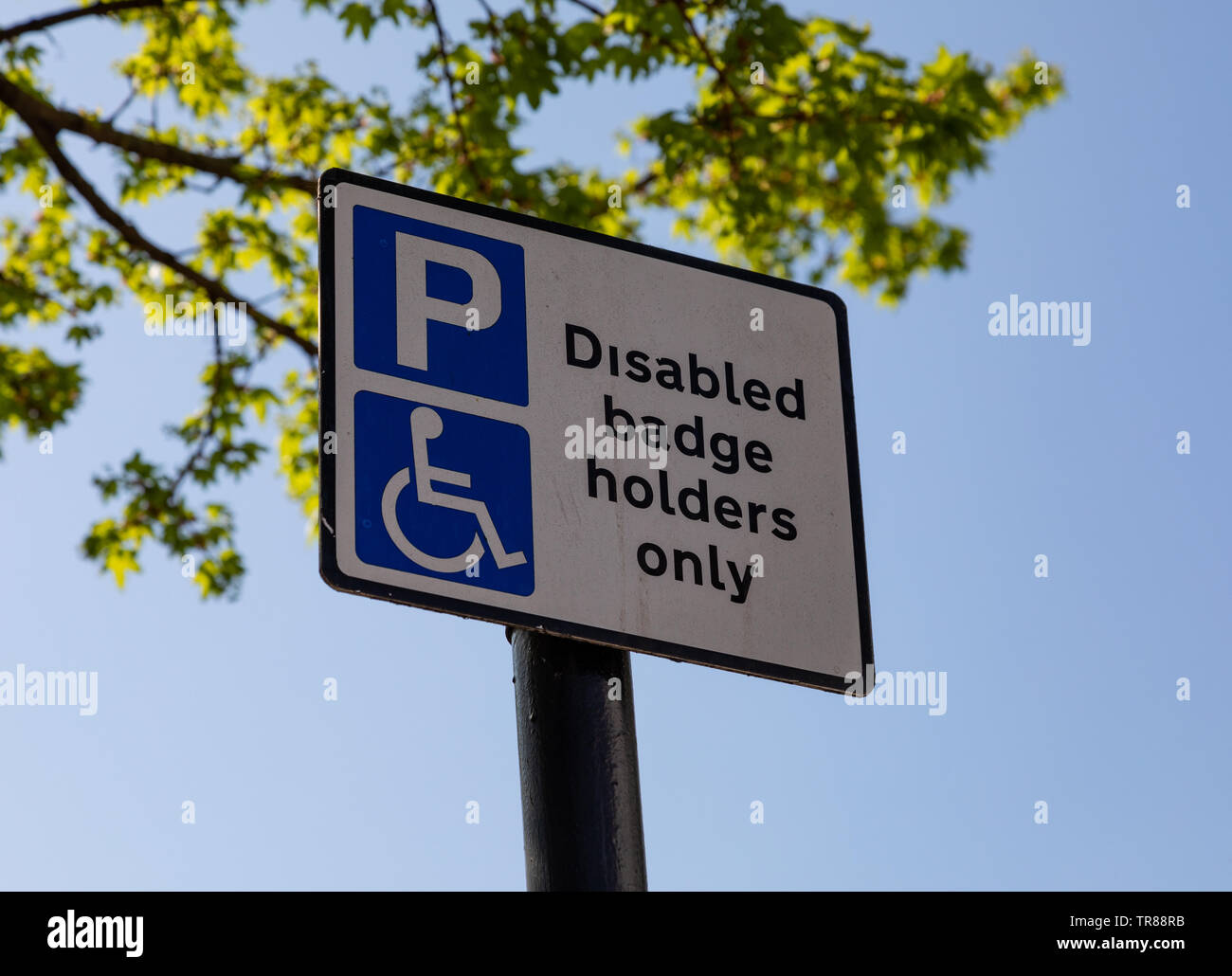 Close up of street sign with logos indicating parking for disabled badge holders only Widnes April 2019 Stock Photo
