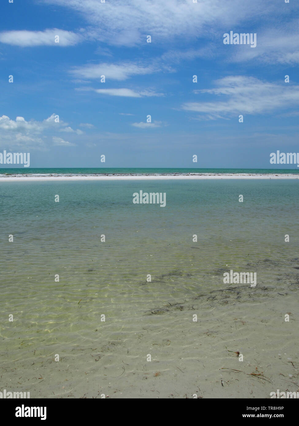 Shoreline at Anclote Key, Tarpon Springs, Florida, USA, May