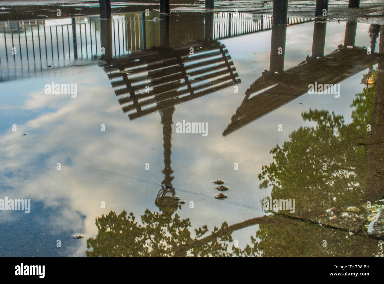 Reflections in the water of the path banks of the River Thames after rain. Suitable for background images. - Stock Image