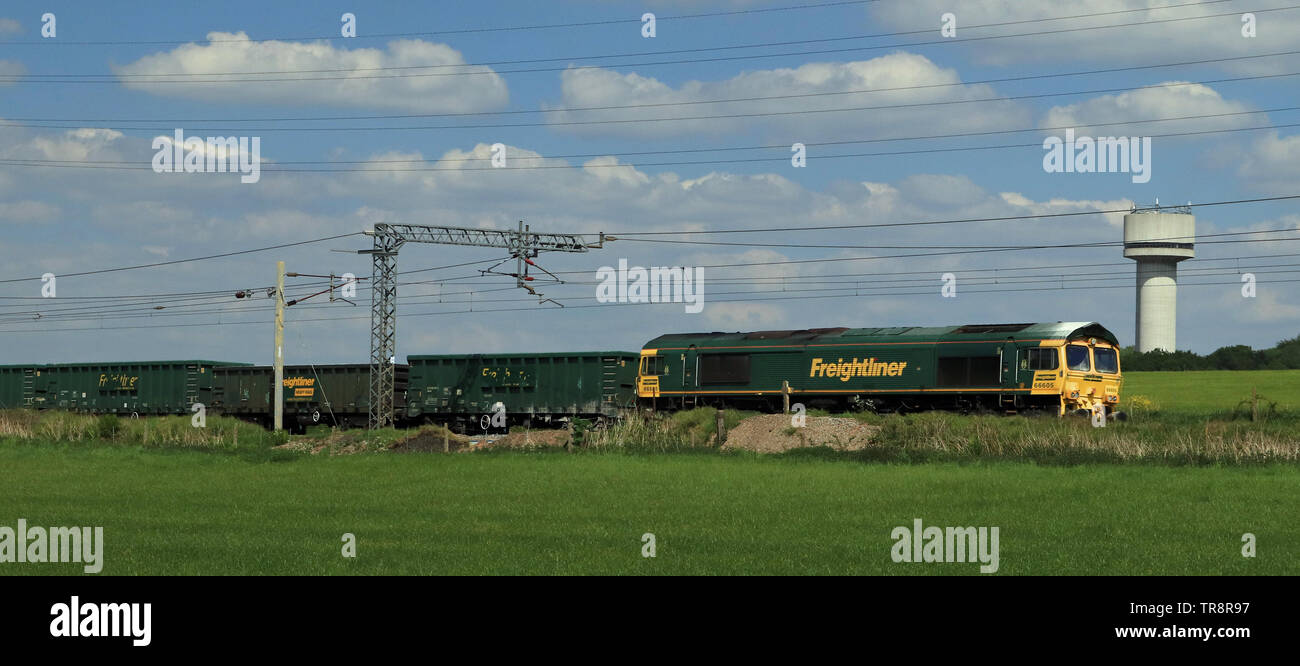 Green Freightliner diesel locomotive 66605 pass the research laboratory water tower at Daresbury with a stone train on a sunny spring afternoon. - Stock Image