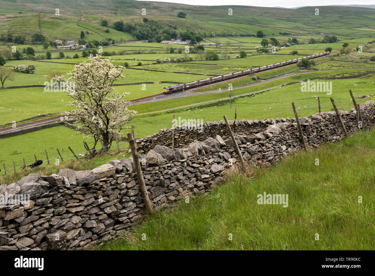 A train of empty waggons approaches the sidings at Arcow Quarry, Helwith Bridge on the Settle-Carlisle railway line, before reversing into the quarry. - Stock Image
