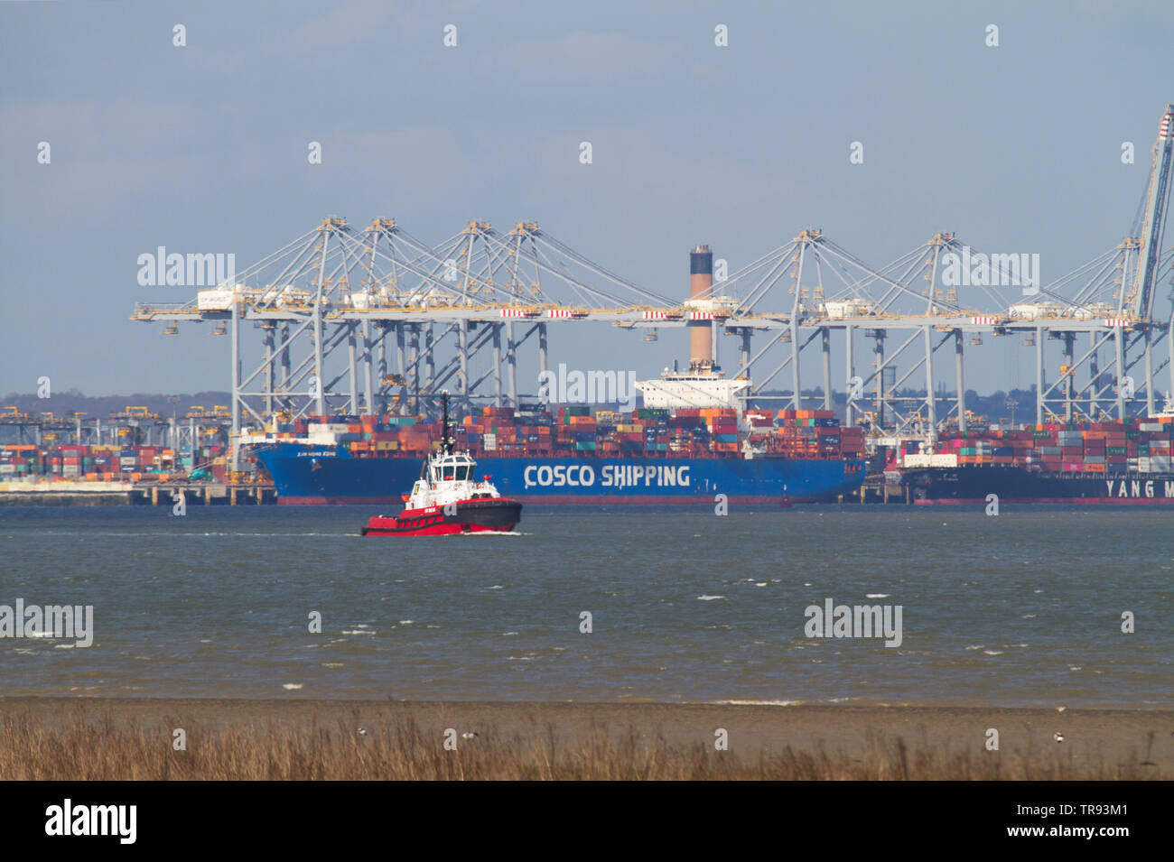A tug boat the SD Seal sailing in the Thames Estuary near Tilbury in Essex with the London Gateway container terminal in the background. - Stock Image