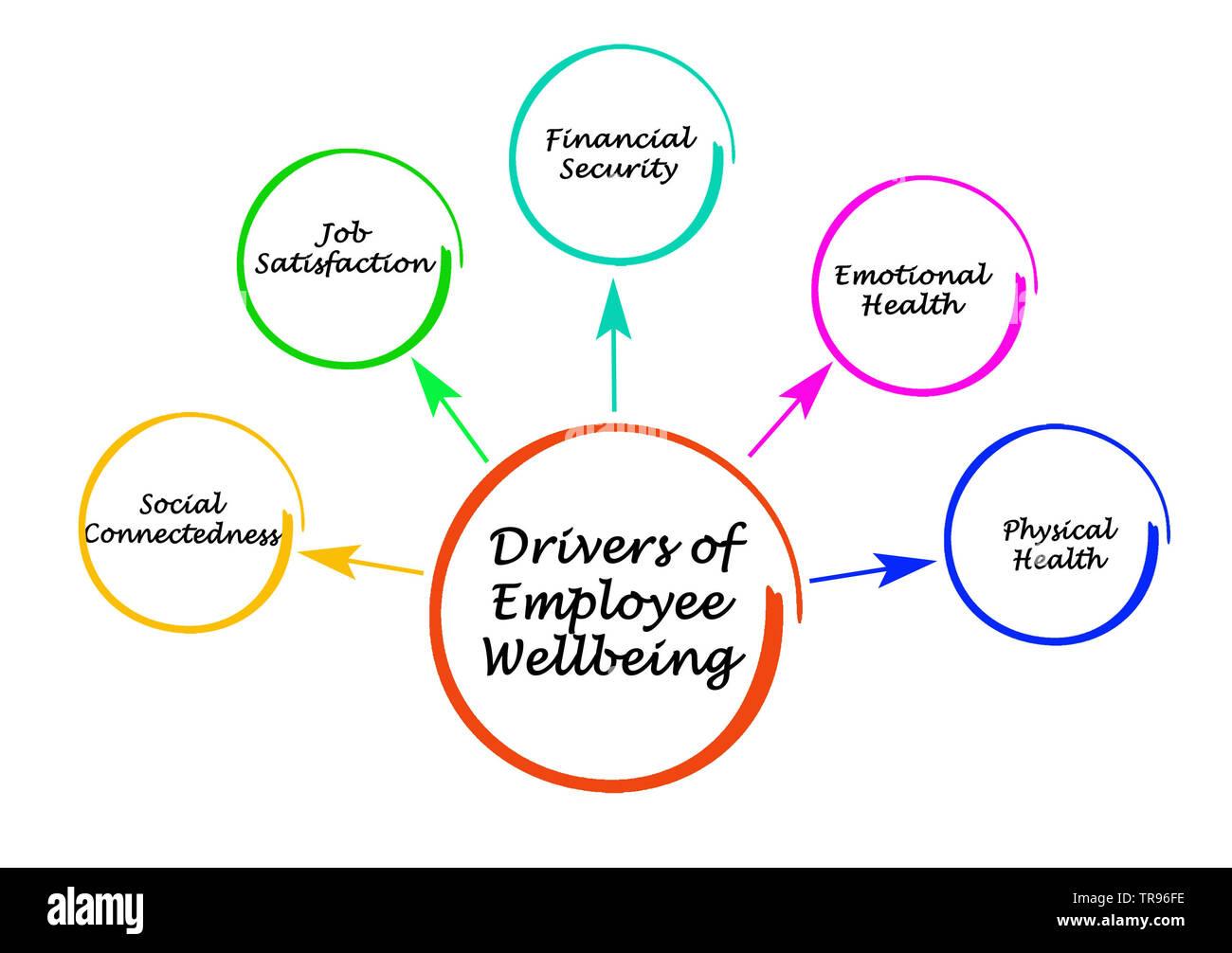 Drivers of Employee Wellbeing - Stock Image