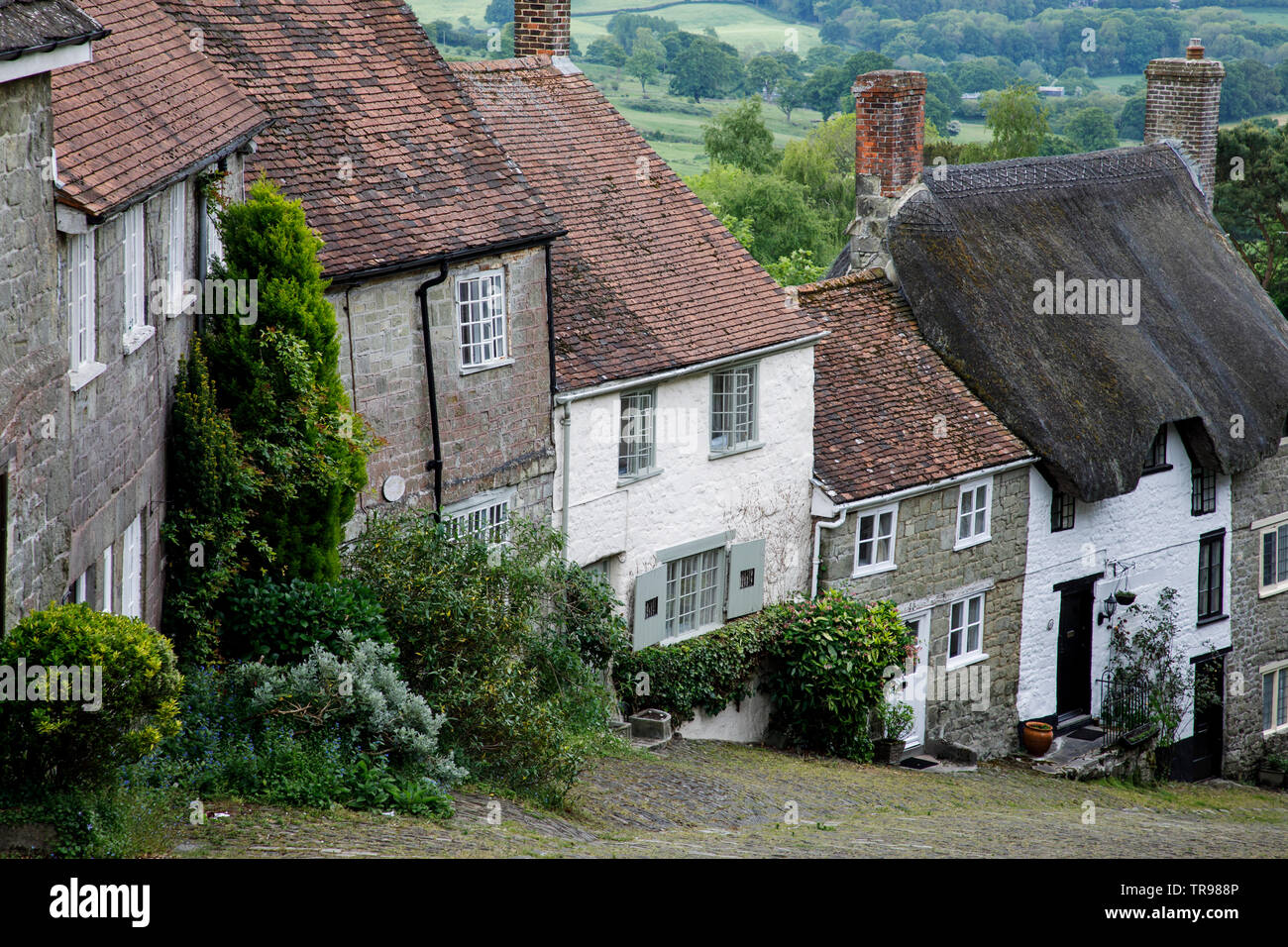 SHAFTESBURY, UK - MAY 19th, 2019: Gold Hill is a steep cobbled street in the town of Shaftesbury in the English county of Dorset. It is famous for its - Stock Image