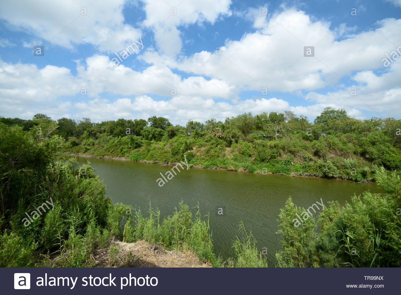 Rio Grande River United States Mexico Border. Rio Grande River. Rio Grande River Brownsville, Texas USA and Tamaulipas Mexico. Sabal Palm Sanctuary US - Stock Image