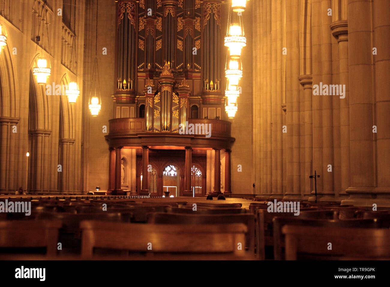 Interior of Duke Chapel, with the grand pipe organs in the back. Durham, NC, USA. - Stock Image