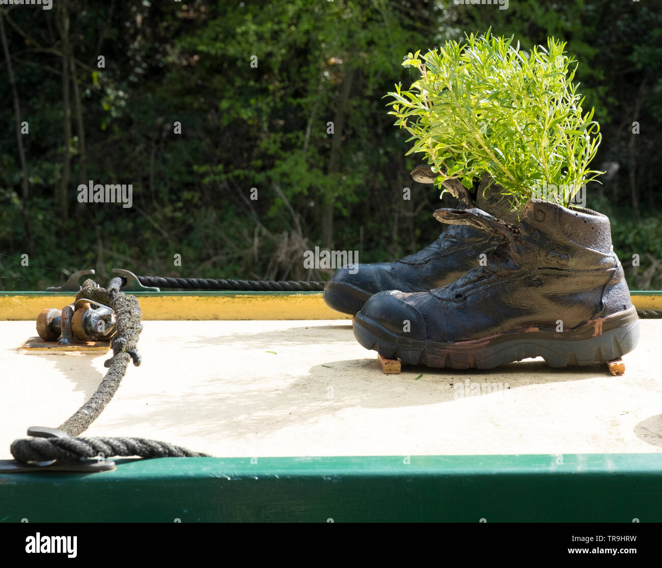 Boots turned into planters on a canal barge, Stourbridge, West Midlands, England, Europe. - Stock Image