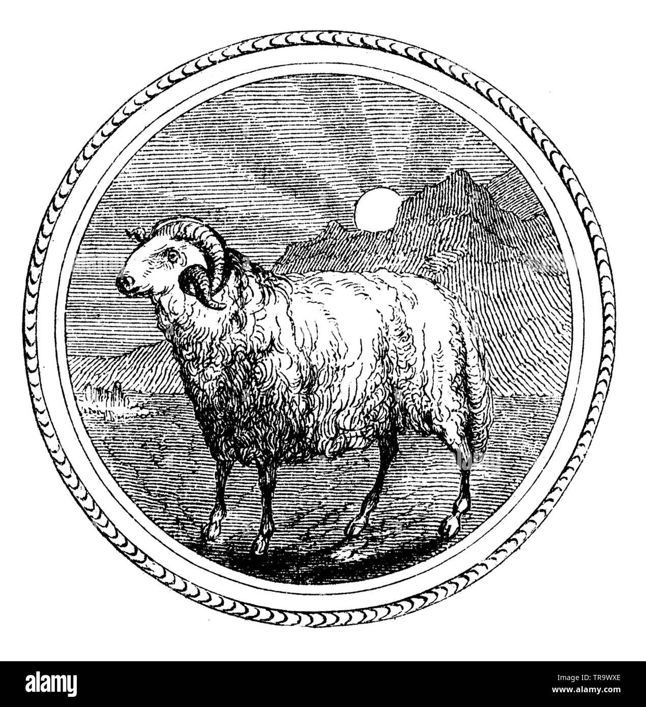 Constellation Aries, , (calendar, 1875 Stock Photo