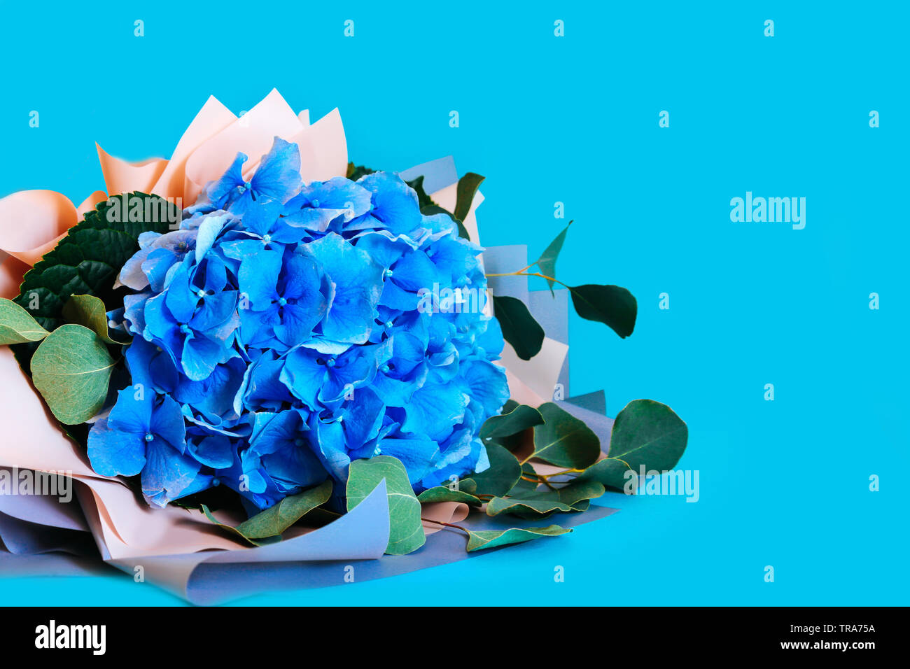 Bouquet Blue Hydrangea On A Blue Background Wedding Flowers Or Sale In The Store Stock Photo Alamy
