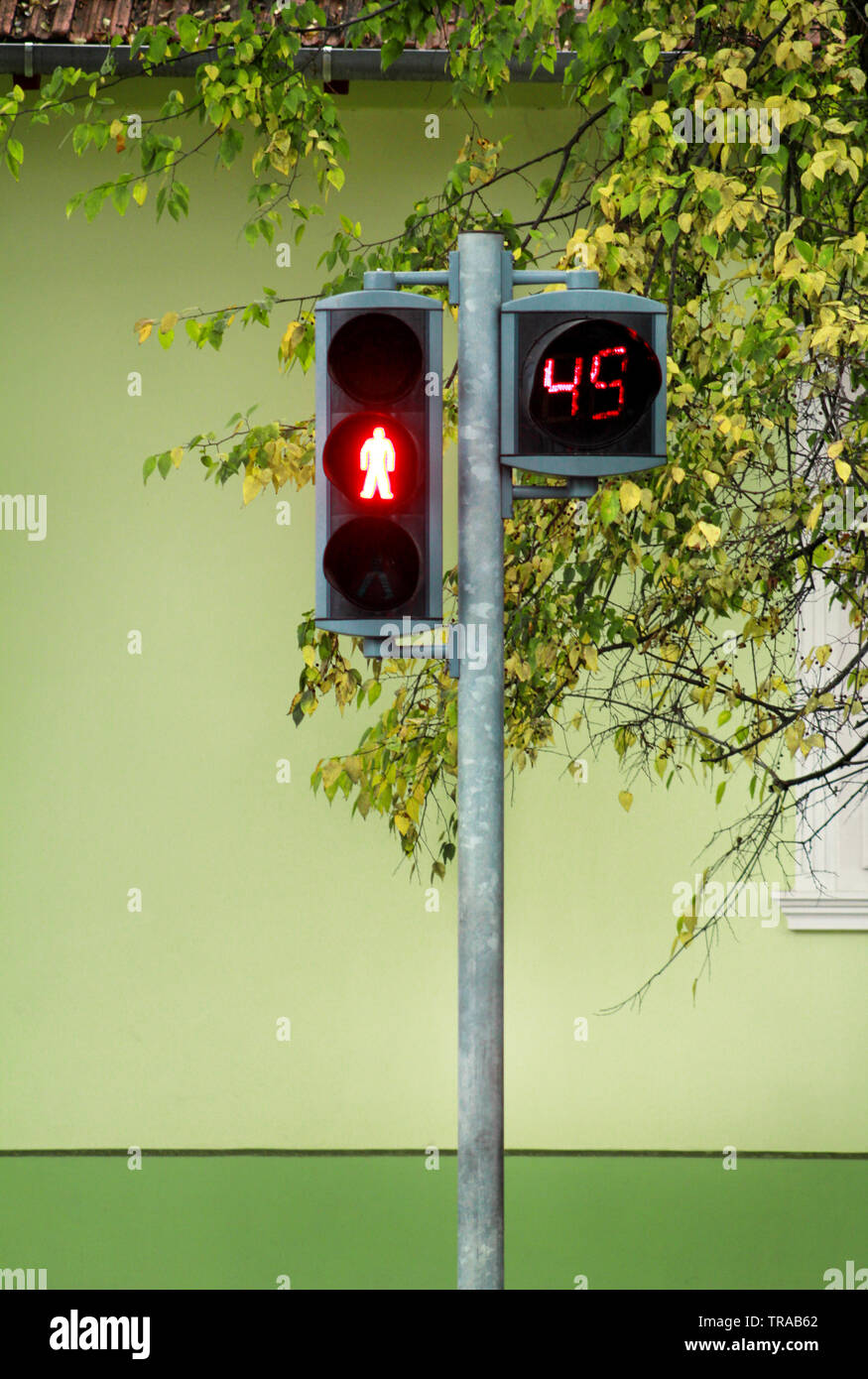 Traffic light on pedestrian crossing. Counter is counting for duration of red light. Waiting to start green light and safe crossing over pedestrian. - Stock Image