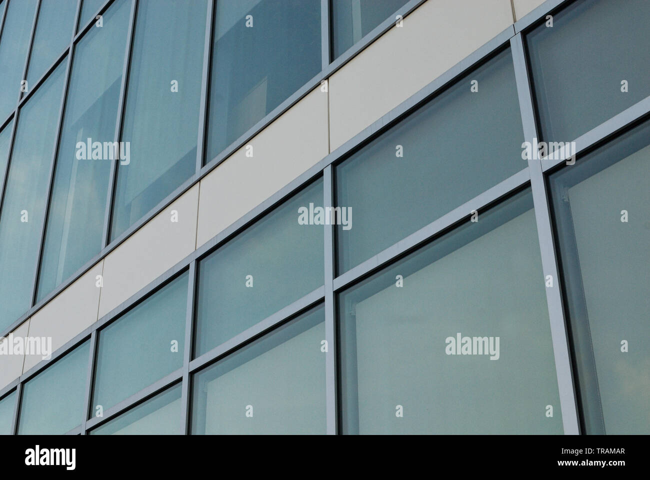 Detail of a modern curtain wall multi-story building. - Stock Image