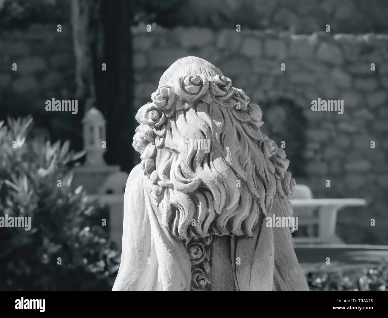 upper back view of a white stone female statue, curly long hair with a rose band on the head, black and white shot - Stock Image