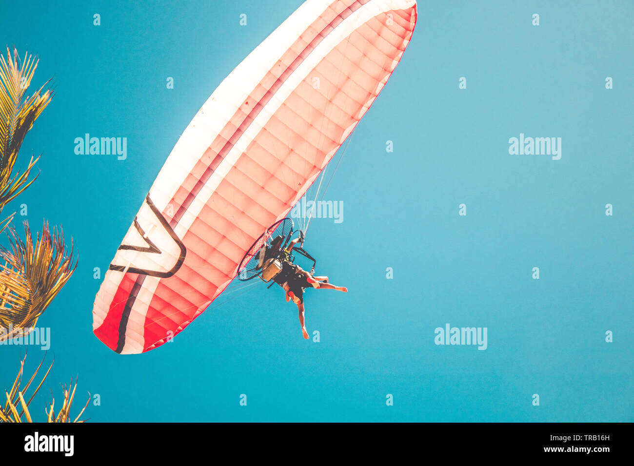 Water Paragliding Stock Photos & Water Paragliding Stock