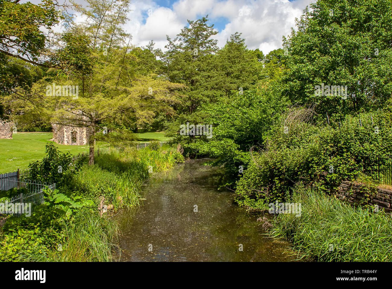 The River Lark next to the Abbey Gardens in Bury St Edmunds, Suffolk - Stock Image