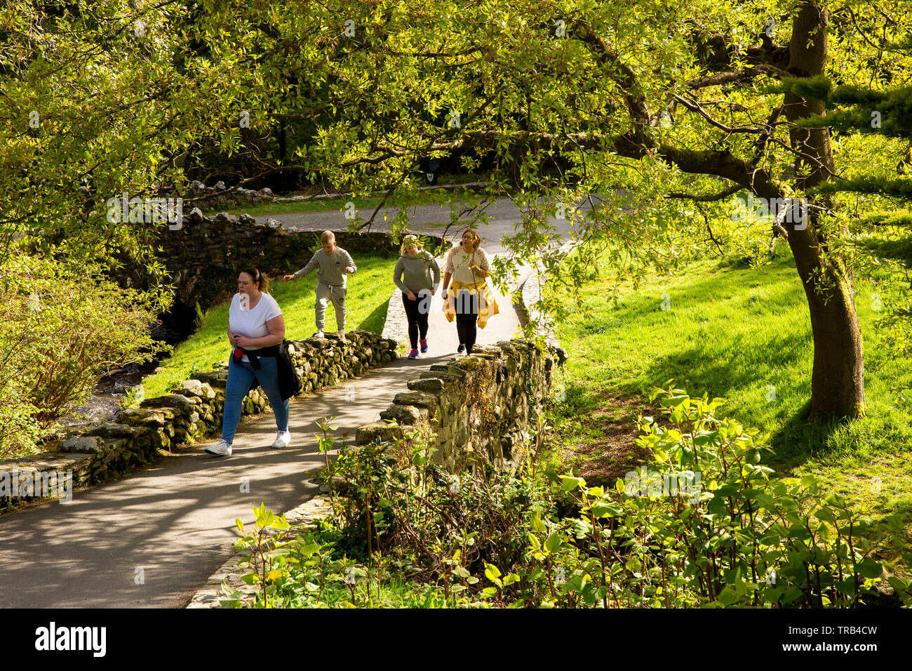 Northern Ireland, Co Down, Bryansford, Tollymore Forest Park, family walking through landscaped parkland Stock Photo