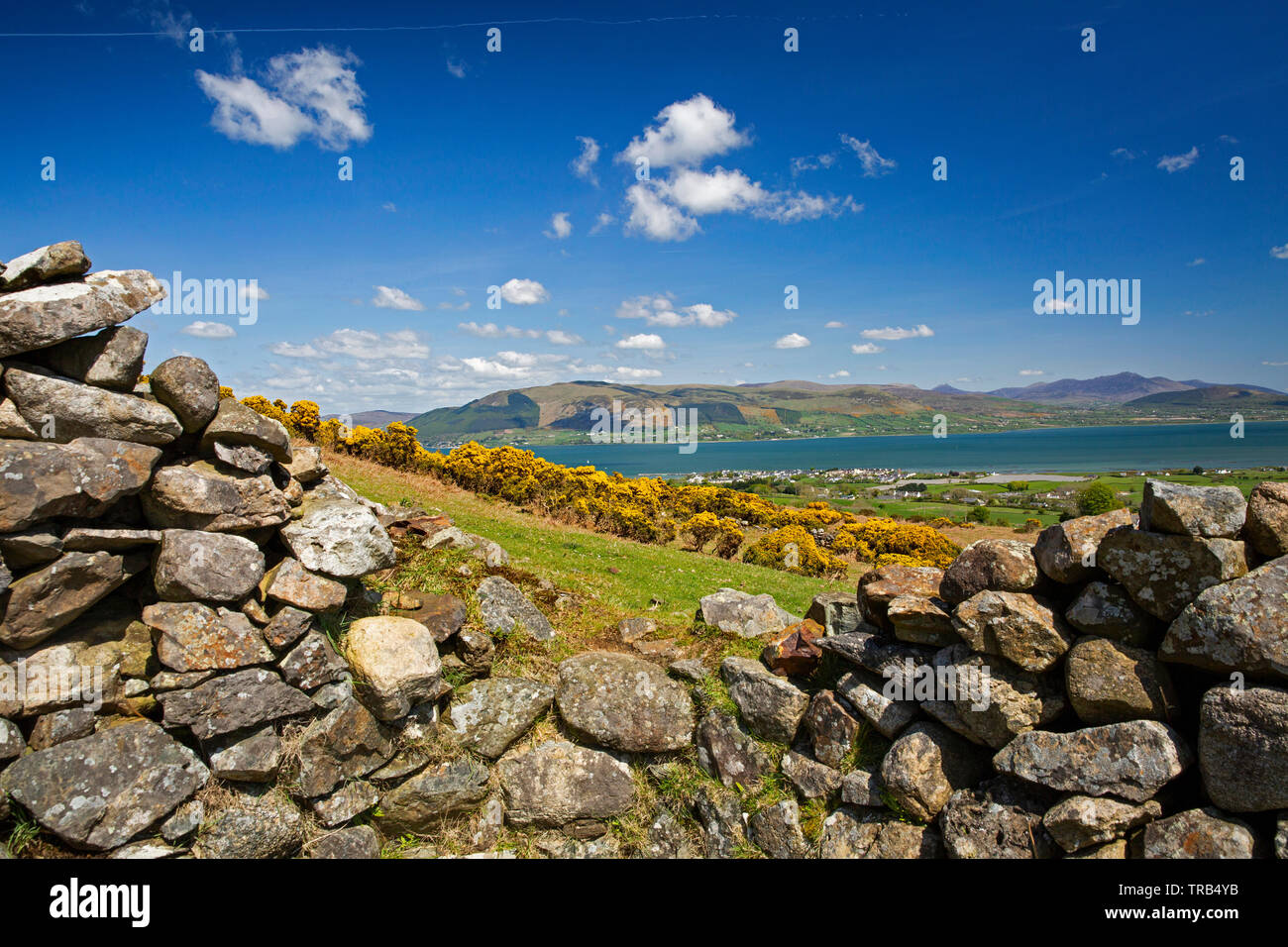 Ireland, Co Louth, Cooley Peninsula, Rooskey, elevated view across Carlingford Lough to Mourne Mountains from abandoned pre-famine village - Stock Image