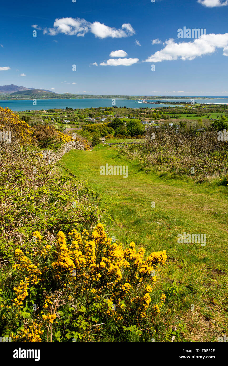 Ireland, Co Louth, Cooley Peninsula, Rooskey, green lane through abandoned village above Carlingford Lough overlooking Mourne Mountains - Stock Image
