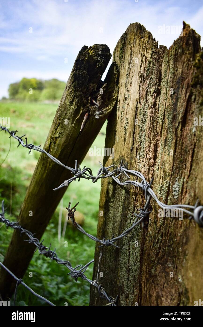 Barbed Wire Wooden Fence Stock Photos Amp Barbed Wire Wooden