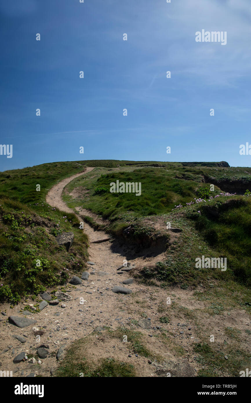 A view of a Cornish coastal path on the Lizard peninsula in Cornwall, West England. - Stock Image