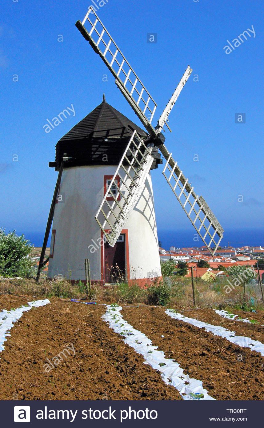 Windmill at Vila do Porto, Santa Maria island, Acores, Portugal - Stock Image