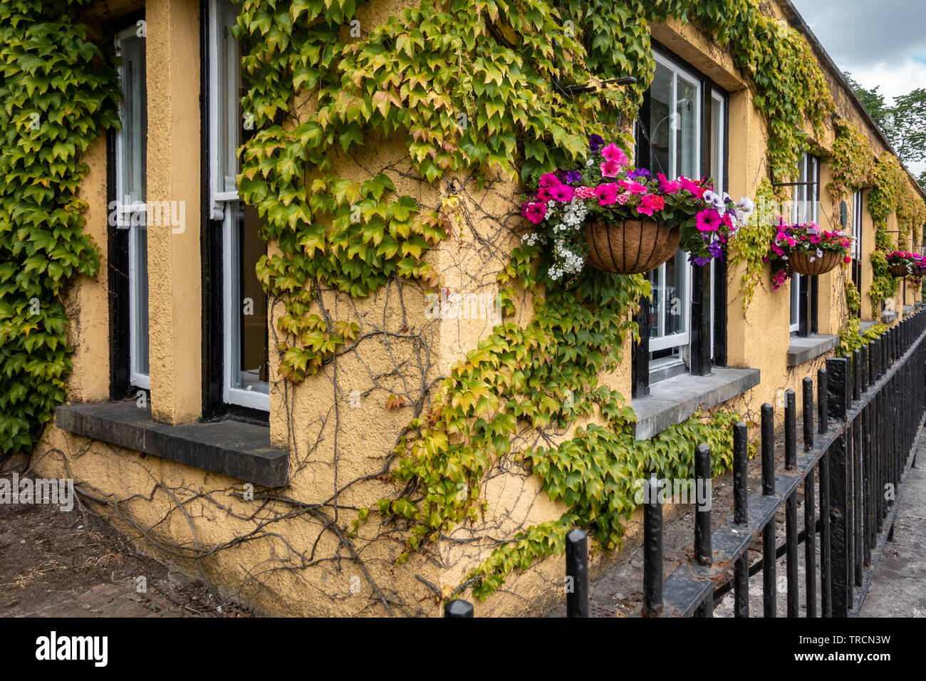 Dunraven Arms Hotel with Flower Boxes in Adare, Ireland - Stock Image