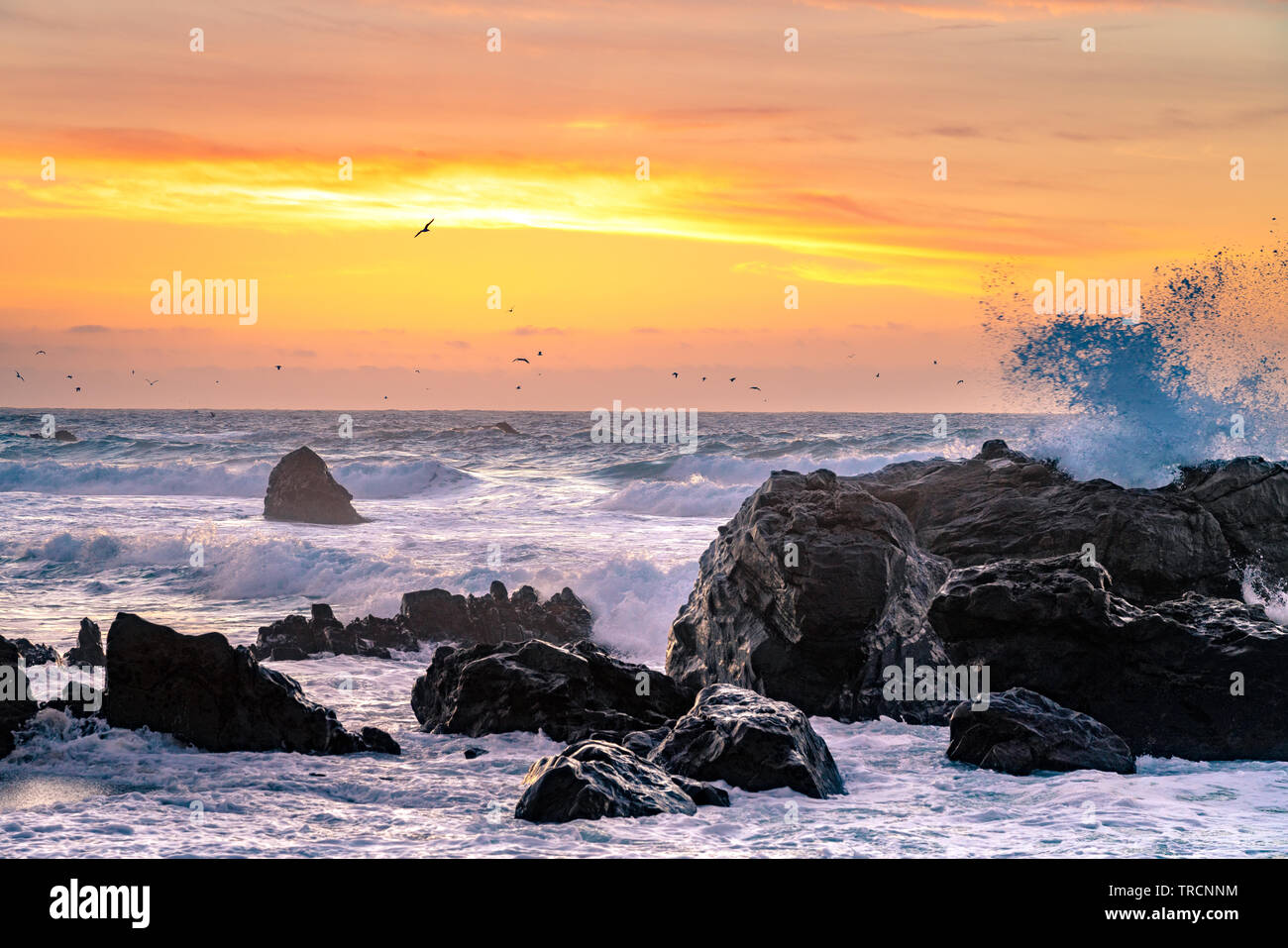 Big Sur, California - Beautiful sunset on a California beach with large waves crashing over rocks and a flock birds flying in the distance. Stock Photo