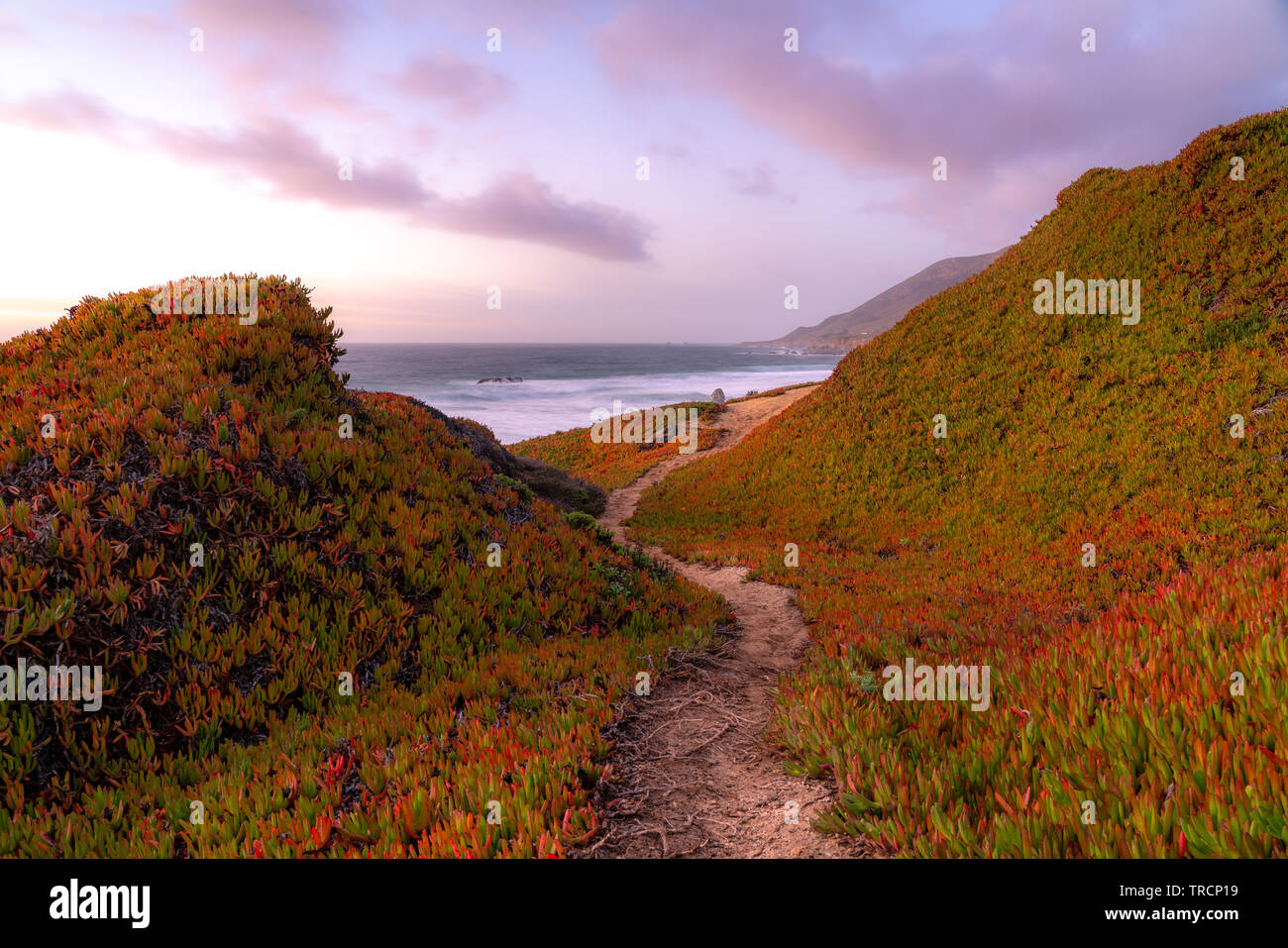 Sunset view at Calla Lily Valley near Big Sur, California. Stock Photo