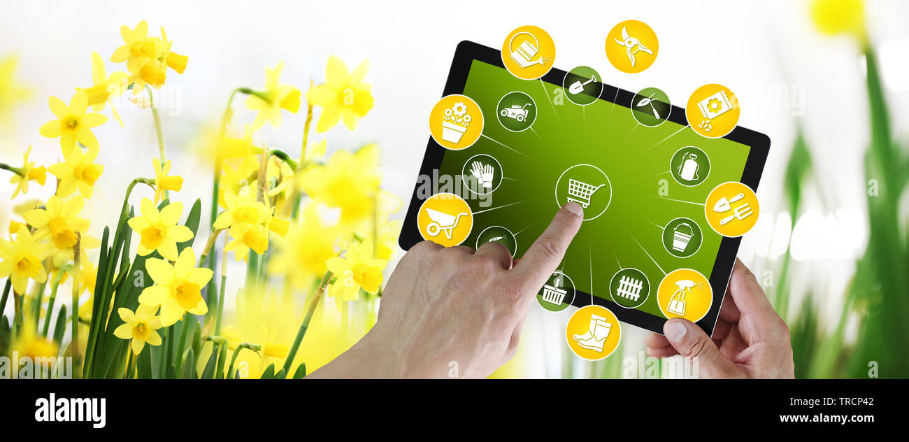 gardening equipment e-commerce concept, online shopping on digital tablet, hand pointing and touch screen with tools icons, on spring flower plants ba Stock Photo