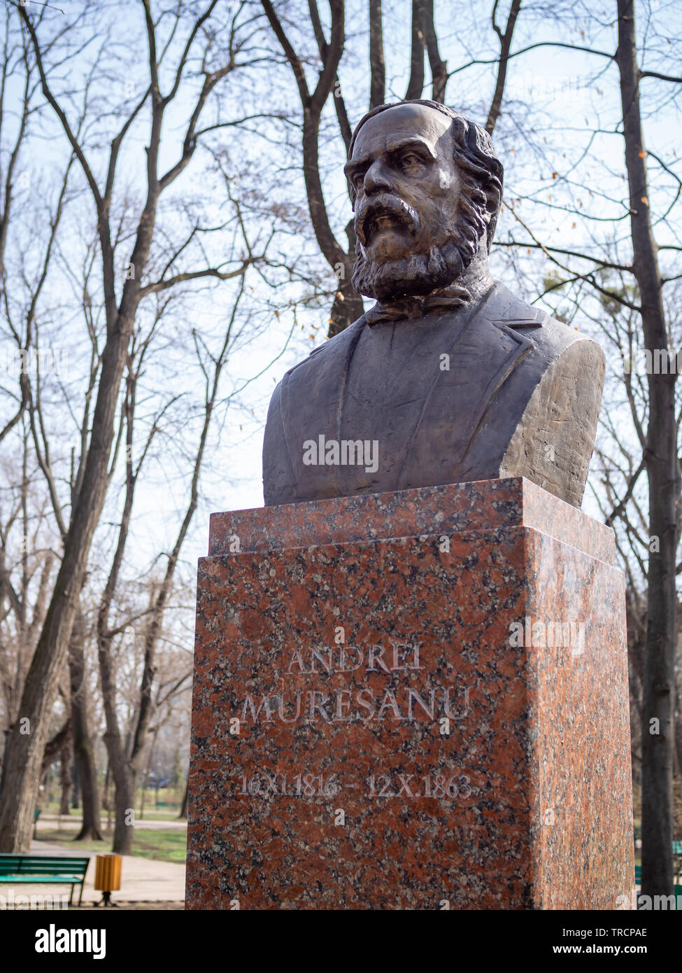 CHISINAU, MOLDOVA-MARCH 21, 2019: Andrei Muresanu bust in the Alley of Classics - Stock Image