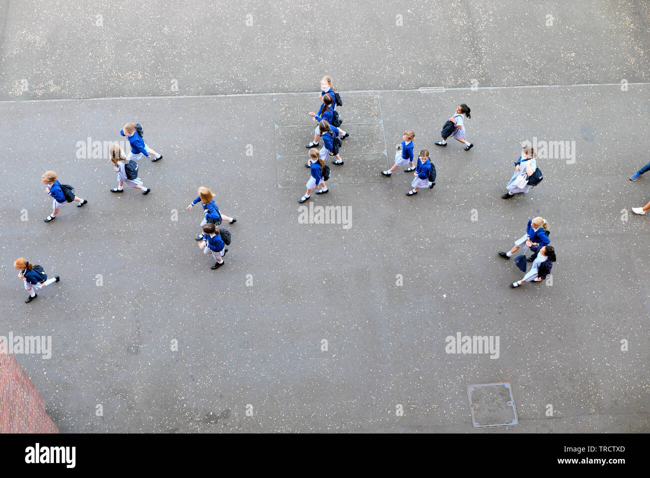 View of a school group of primary schoolgirls girls schoolchildren in uniform from above on a day out in London England UK  KATHY DEWITT - Stock Image